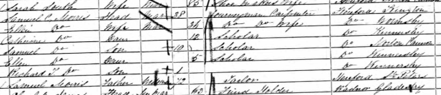 The 1851 census entry confirming Ellen (under her married name) as being from Wormsley, Herefordshire.
